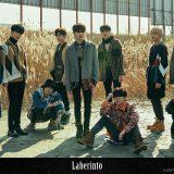 Mnet『PRODUCE X 101』にも出演?今後の活躍に期待!UP10TION のメンバープロフィールをご紹介!